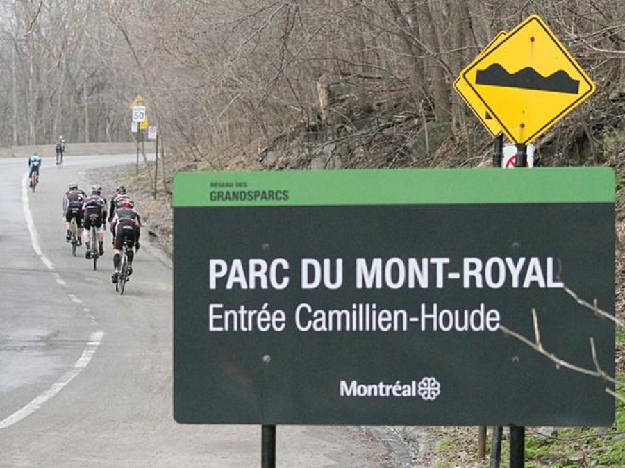 Проезжать через Mount Royal разрешат, но не бесплатно